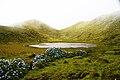 Lagoa dos Grotões, concelho da Lajes do Pico, ilha do Pico, Açores, Portugal.JPG