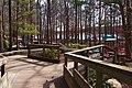 Lake Wheeler Park - panoramio (24).jpg