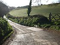 Lane to Bickleigh Farm - geograph.org.uk - 1242060.jpg