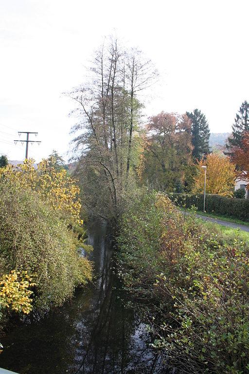 Lauf der Elsava zwischen Rück links und Schippach rechts