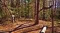 Lawrence County, AL, USA - panoramio (6).jpg