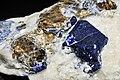 Lazurite, mica var. muscovite et pyrite (Afghanistan) 1.JPG