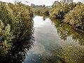 Le Doubs en amont du pont.jpg