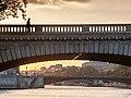 Le passant du Pont Louis Philippe, Paris 15 mai 2014.jpg