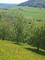 Leutratal valley 2008.jpg