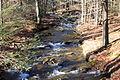 Lick Branch looking upstream.JPG