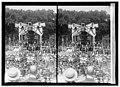 Lindbergh LCCN2016822885.jpg