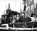 Loading crew and donkey engine, Goodyear Logging Company, near Clallam Bay, ca 1920 (KINSEY 2060).jpeg