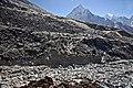 Lobuche to Dughla-70-Berghang-Ama Dablam-2007-gje.jpg