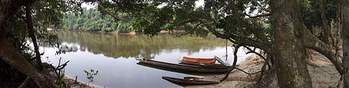 Lomami River at Katopa Camp, Democratic Republic of the Congo.JPG