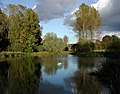Londesborough Park - geograph.org.uk - 589107.jpg
