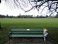 Long shot of the bench (OpenBenches 4055-1).jpg