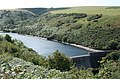Luccombe, Nutscale Reservoir - geograph.org.uk - 216940.jpg