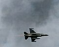 Luchtmachtdagen 2011 Royal Netherlands Air Force (6188271605).jpg