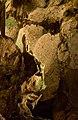 Madonna Rock Formation, Hato Caves, Curaçao (4389021094).jpg