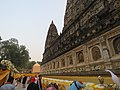 Mahabodhi temple and around IRCTC 2017 (83).jpg