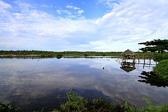 Narra, Palawan - Image: Malatgao Fish Pond