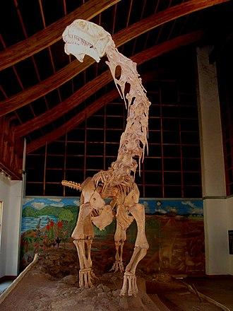Cultural & Museum Centre Karonga - Malawisaurus (Malawi lizard) on display at the Cultural Museum Centre Karonga