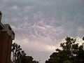 Mammatus Over UCF.jpg