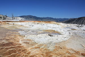 Mammoth Hot Springs - View of the terraces made of crystallized calcium carbonate