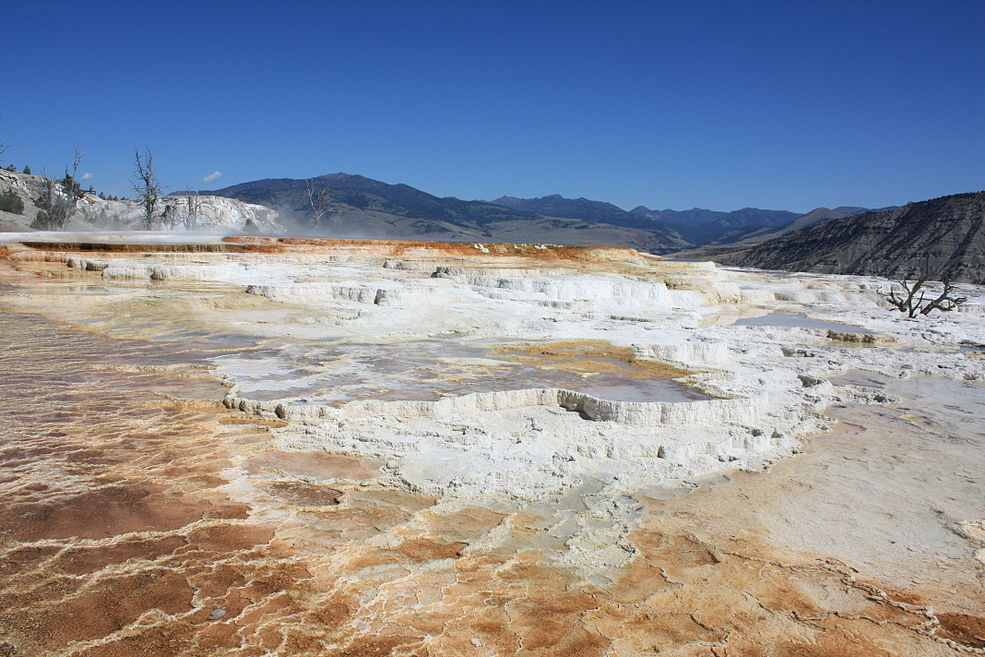 Mammoth Hot Springs - Terracing - August 2011.JPG