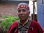 Um nativo Mapuche.
