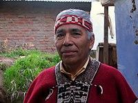 Niña mapuche. Los mapuches son la principal etnia indígena del país, con un 4% de la población