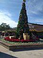 Marketplace Christmas Tree (30619410560).jpg