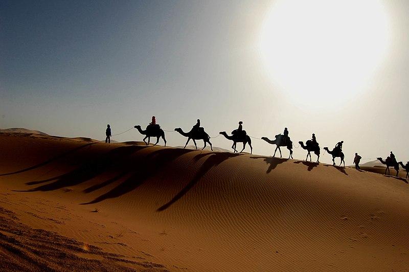 File:Maroc Sahara caravane.jpg