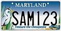 Maryland Treasure the Chesapeake Sample License Plate.jpg