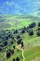 Masal - Kolour road - panoramio (3).jpg