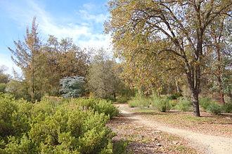 McConnell Arboretum & Botanical Gardens - Image: Mc Connell Arboretum & Botanical Gardens Redding, California DSC03010