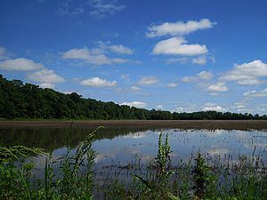 Shelby County, Tennessee - Meeman-Shelby Forest State Park