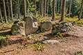 Megalithgrab Everstorfer Forst Nord 7.jpg