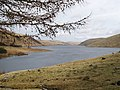 Megget Reservoir from the Winterhopeburn track - geograph.org.uk - 1204639.jpg