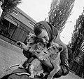 Meisje met jonge leeuwen in Artis (3236810740).jpg
