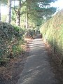 Mid section of the footpath from Brook Road to Culmer - geograph.org.uk - 1545821.jpg
