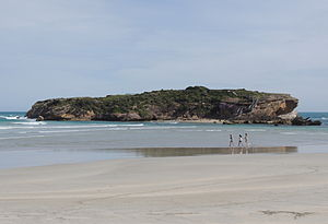 Middle Island (Warrnambool) - Middle Island, Warnambool, Victoria (2014)