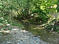 Mill Creek at Erie Zoo downstream.jpg