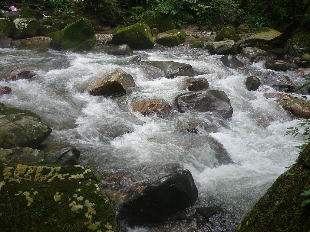 Minca santamarta paisajes restaurante vegetacion fauna 012
