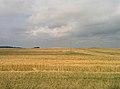 Minsk Region, Belarus - panoramio (32).jpg