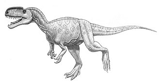 Tetanurae - Illustration of Monolophosaurus jiangi