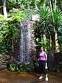 Monte Palace Tropical Garden DSCF0121 (4642265941).jpg