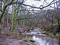 Morra Head Wood - geograph.org.uk - 99961.jpg