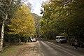 Mount Wilson NSW 2786, Australia - panoramio (16).jpg