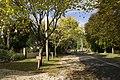 Mount Wilson NSW 2786, Australia - panoramio (58).jpg