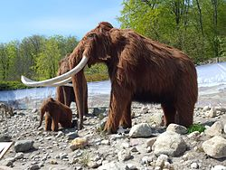Mammut,  model i Alborg Zoo