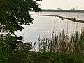 Mueggelsee - Uferschutz (Mueggel Lake - Bank Protection) - geo.hlipp.de - 36676.jpg