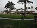 Museum Park next to the National Museum of Qatar in Al Salata.jpg