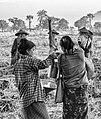 Myanmar at the crossroads (8449747638).jpg